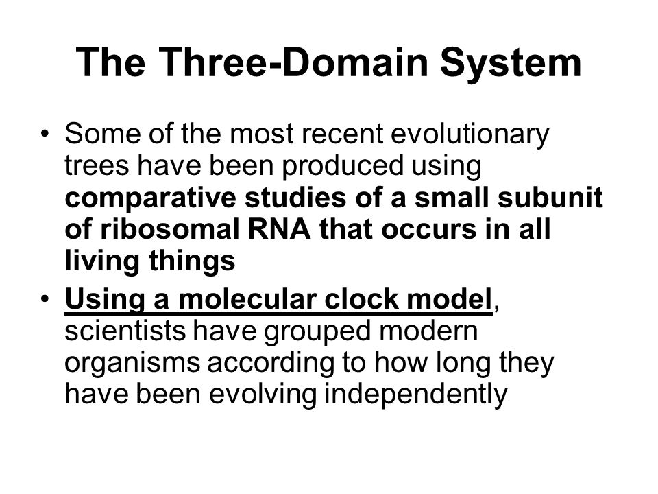 The Three-Domain System Some of the most recent evolutionary trees have been produced using comparative studies of a small subunit of ribosomal RNA that occurs in all living things Using a molecular clock model, scientists have grouped modern organisms according to how long they have been evolving independently