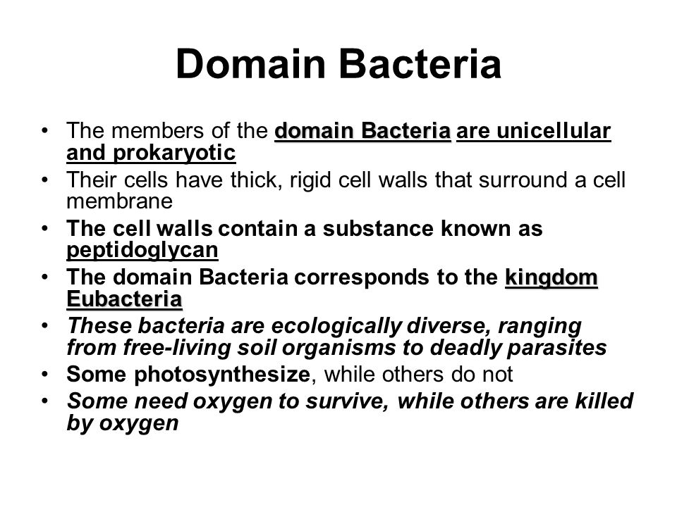Domain Bacteria domain BacteriaThe members of the domain Bacteria are unicellular and prokaryotic Their cells have thick, rigid cell walls that surround a cell membrane The cell walls contain a substance known as peptidoglycan kingdom EubacteriaThe domain Bacteria corresponds to the kingdom Eubacteria These bacteria are ecologically diverse, ranging from free-living soil organisms to deadly parasites Some photosynthesize, while others do not Some need oxygen to survive, while others are killed by oxygen