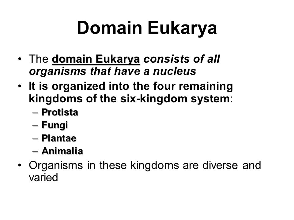 Domain Eukarya domain EukaryaThe domain Eukarya consists of all organisms that have a nucleus It is organized into the four remaining kingdoms of the six-kingdom system: –Protista –Fungi –Plantae –Animalia Organisms in these kingdoms are diverse and varied