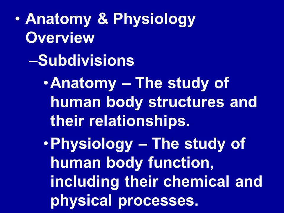 ANATOMY & PHYSIOLOGY CHAPTER ONE Terminology, Systems & Regions ...