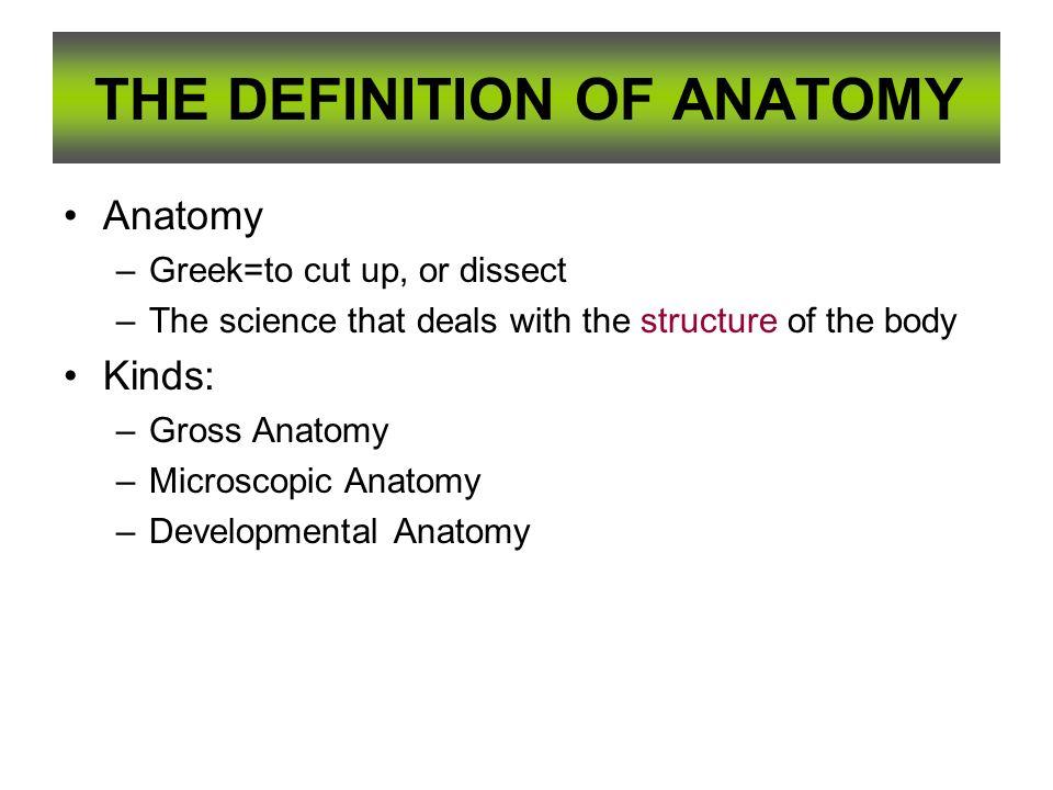Attractive Developmental Anatomy Definition Crest - Anatomy Ideas ...