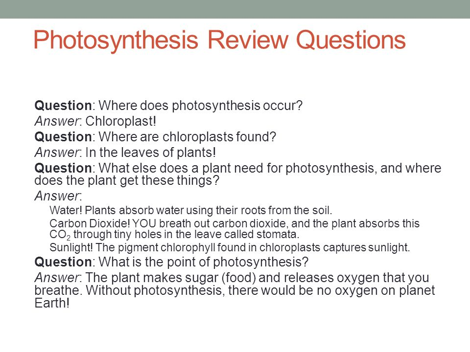 PHOTOSYNTHESIS AND CELLULAR RESPIRATION Standard BIO 2d ppt – Photosynthesis Review Worksheet Answers