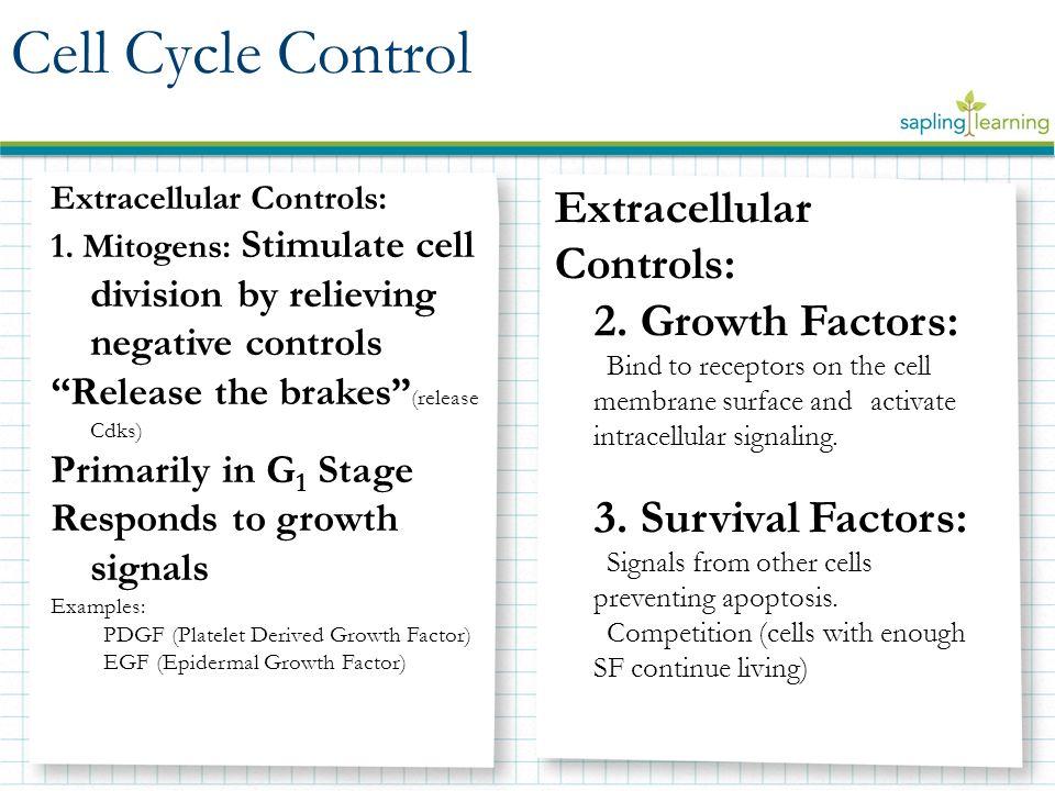 Extracellular Controls: 1.
