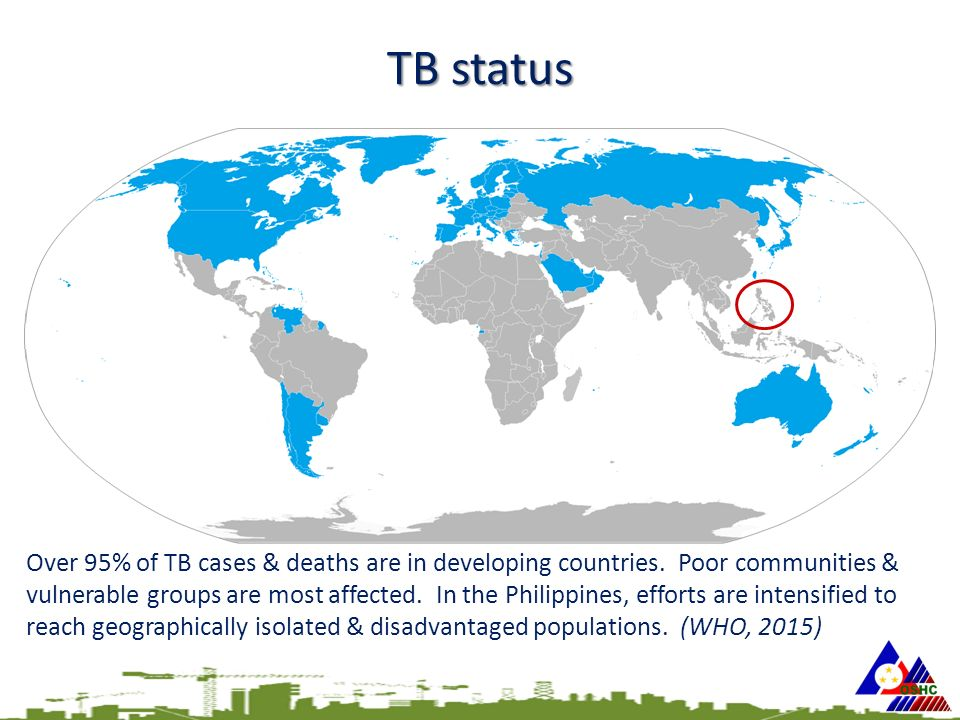 TB status Over 95% of TB cases & deaths are in developing countries.