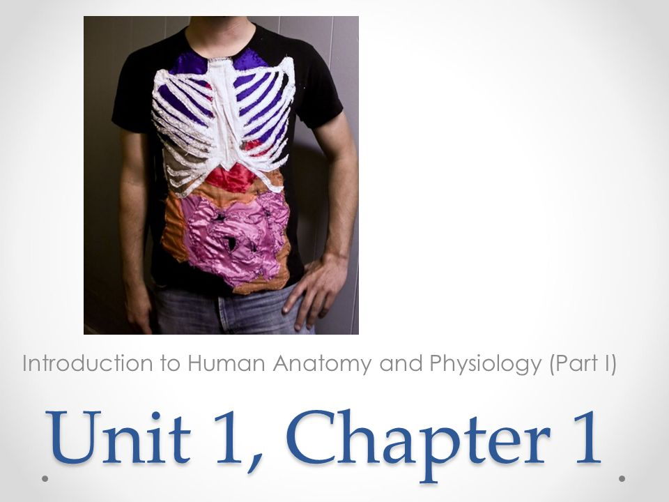 Unit 1, Chapter 1 Introduction to Human Anatomy and Physiology (Part ...