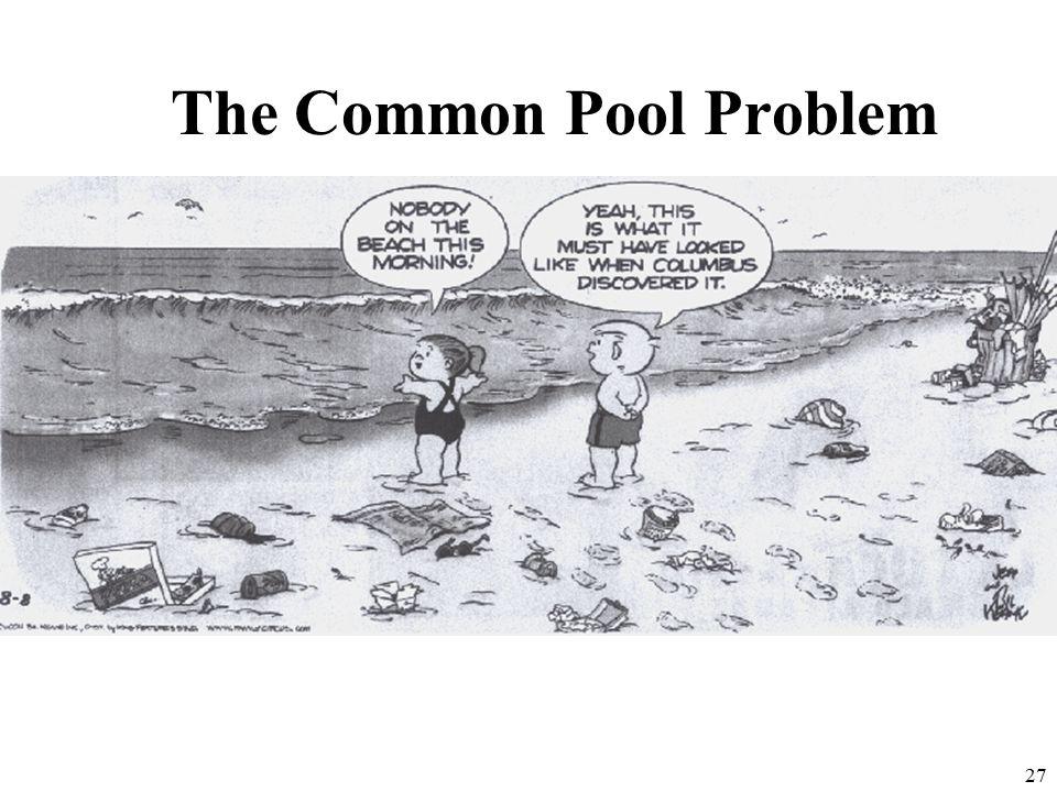 The Common Pool Problem 27