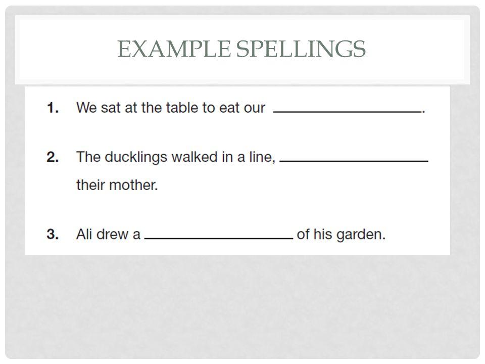 EXAMPLE SPELLINGS