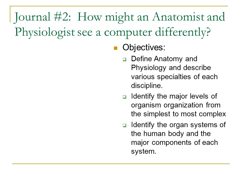 Journal #2: How might an Anatomist and Physiologist see a computer ...