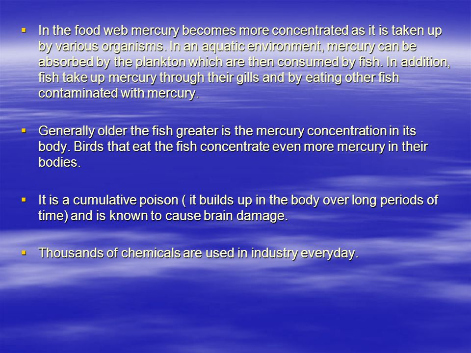  In the food web mercury becomes more concentrated as it is taken up by various organisms.