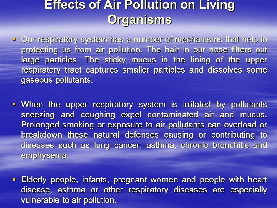 Effects of Air Pollution on Living Organisms  Our respiratory system has a number of mechanisms that help in protecting us from air pollution.