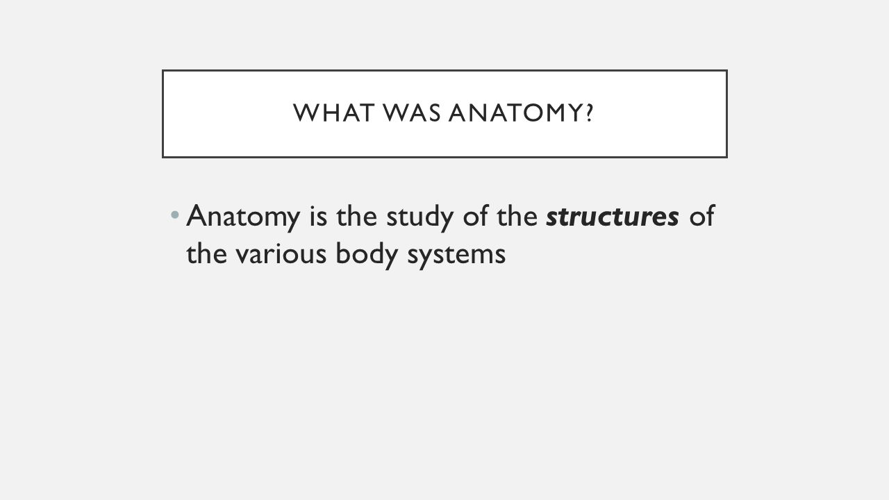 What is anatomy the study of 4297669 - 1cashing.info