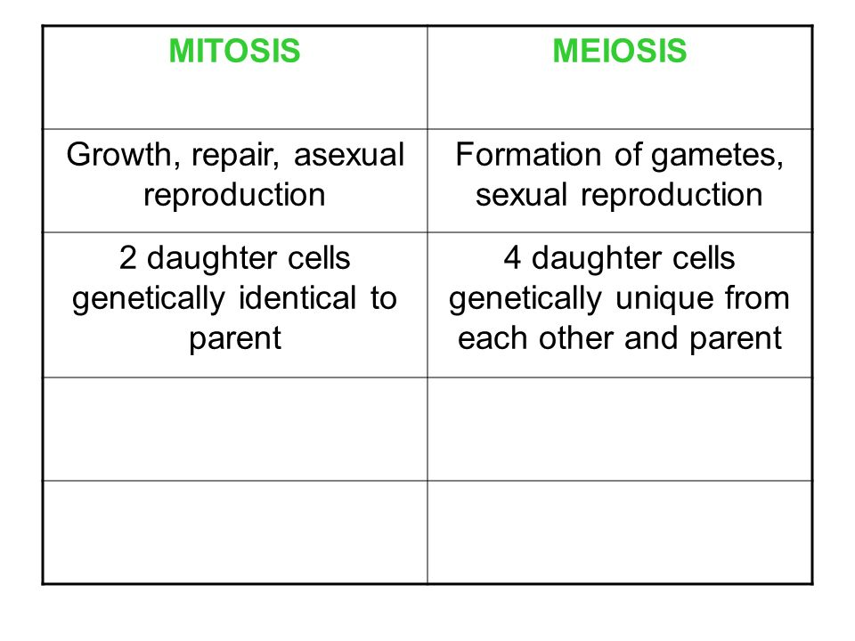 Mitosis vs Meiosis 102 and Asexual vs Sexual Reproduction – Asexual Vs Sexual Reproduction Worksheet