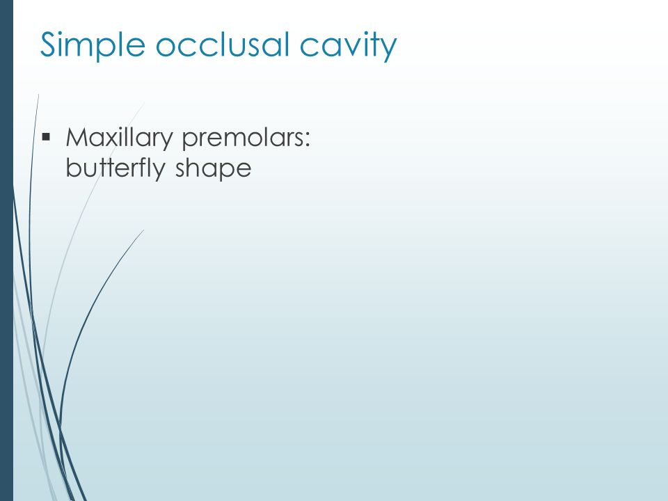 Simple occlusal cavity  Maxillary premolars: butterfly shape