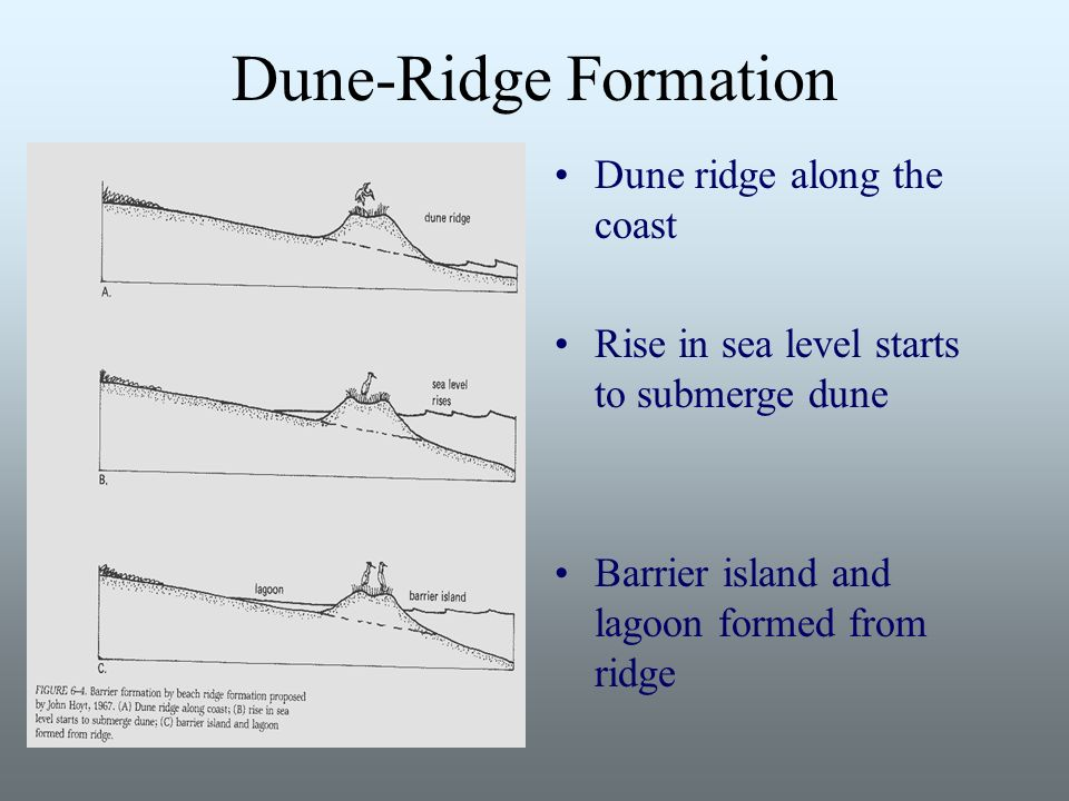 Session 4: Barrier Island, Dunes, Salt Marshes. Room Assignments ...