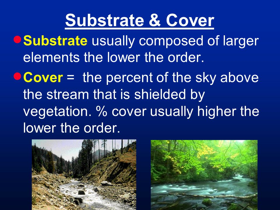 Substrate & Cover Substrate usually composed of larger elements the lower the order. Cover = the percent of the sky above the stream that is shielded