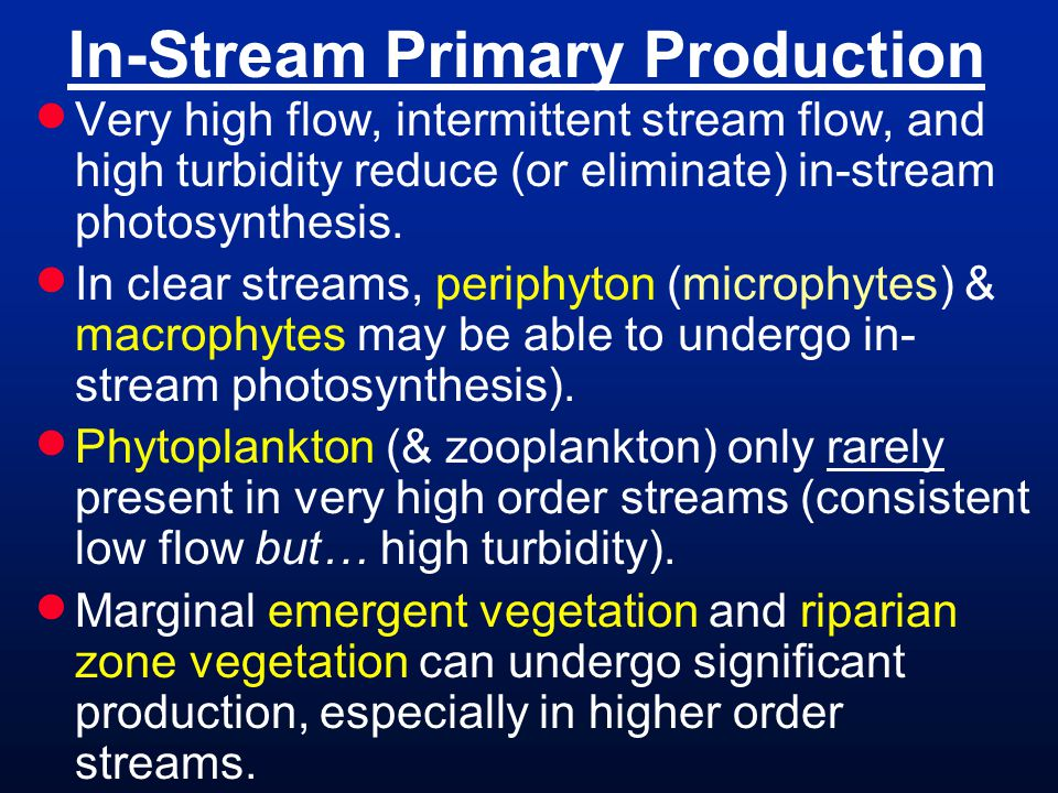 In-Stream Primary Production Very high flow, intermittent stream flow, and high turbidity reduce (or eliminate) in-stream photosynthesis. In clear str
