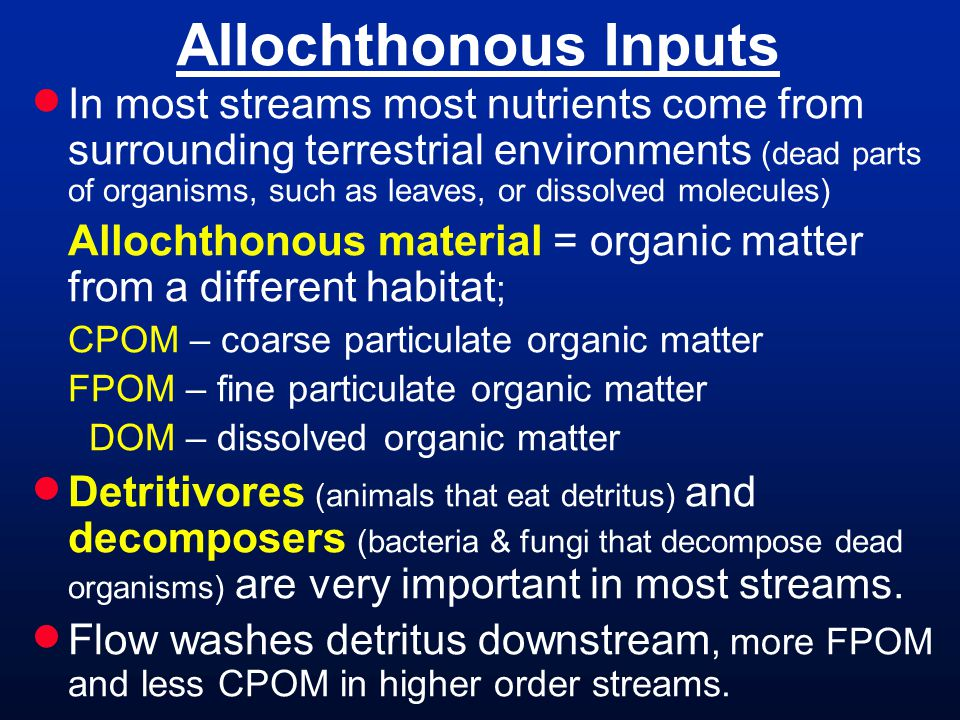 Allochthonous Inputs In most streams most nutrients come from surrounding terrestrial environments (dead parts of organisms, such as leaves, or dissolved molecules) Allochthonous material = organic matter from a different habitat ; CPOM – coarse particulate organic matter FPOM – fine particulate organic matter DOM – dissolved organic matter Detritivores (animals that eat detritus) and decomposers (bacteria & fungi that decompose dead organisms) are very important in most streams.