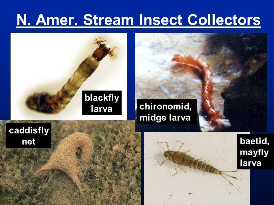 N. Amer. Stream Insect Collectors caddisfly net chironomid, midge larva blackfly larva baetid, mayfly larva