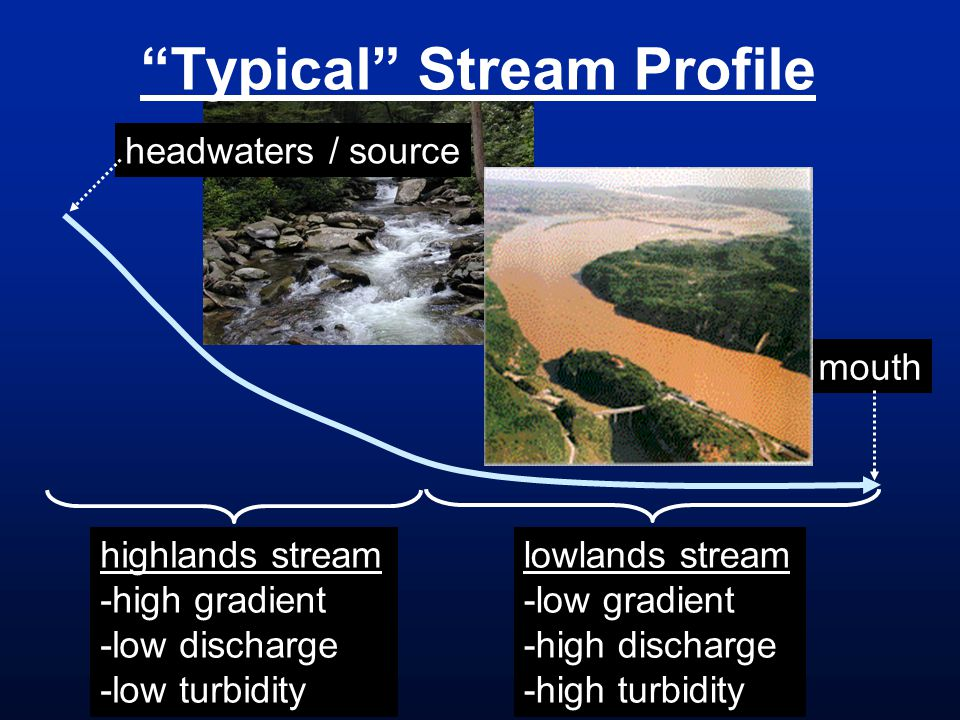 Typical Stream Profile headwaters / source mouth highlands stream -high gradient -low discharge -low turbidity lowlands stream -low gradient -high dis