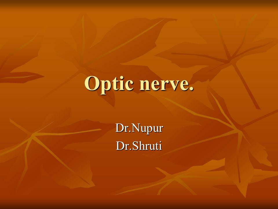 Optic nerve. Dr.NupurDr.Shruti