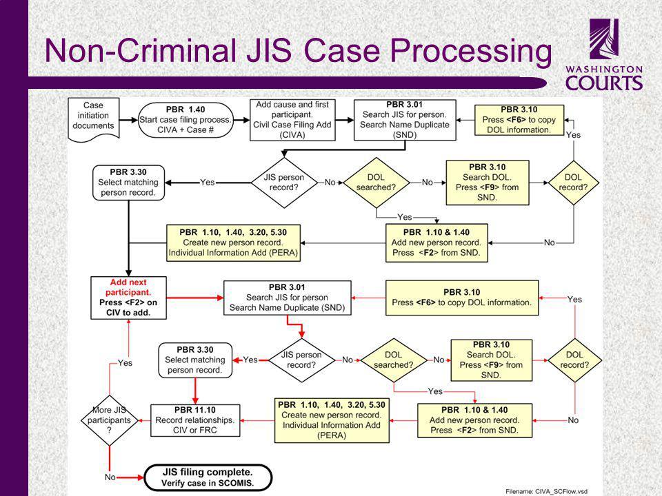 c Non-Criminal JIS Case Processing