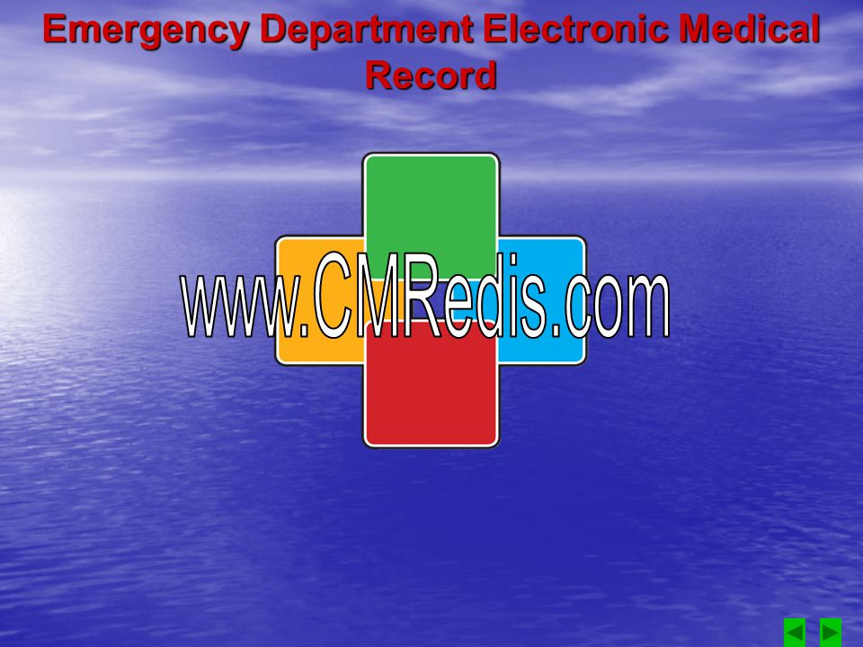Emergency Department Electronic Medical Record