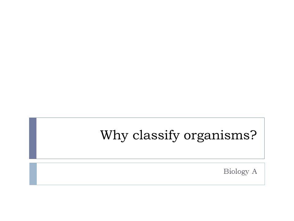 Why classify organisms? Biology A
