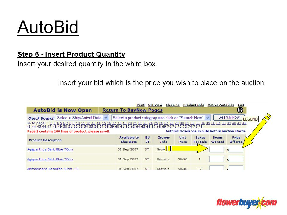 AutoBid Step 6 - Insert Product Quantity Insert your desired quantity in the white box. Insert your bid which is the price you wish to place on the au