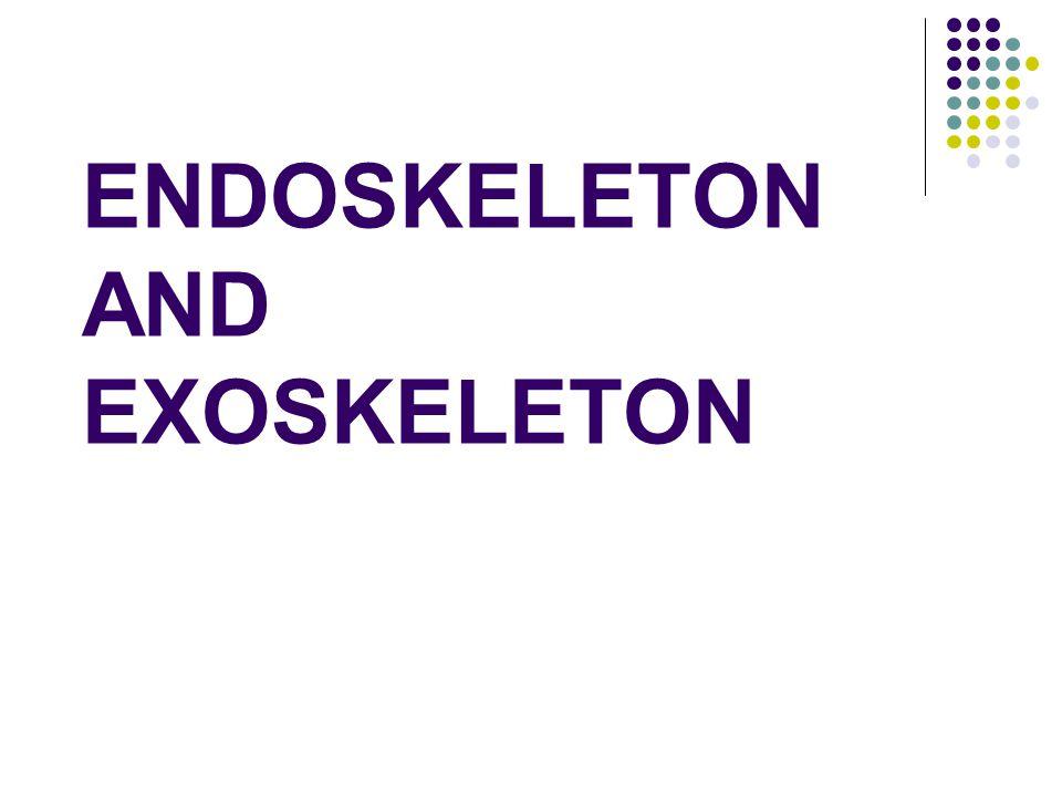 ENDOSKELETON AND EXOSKELETON