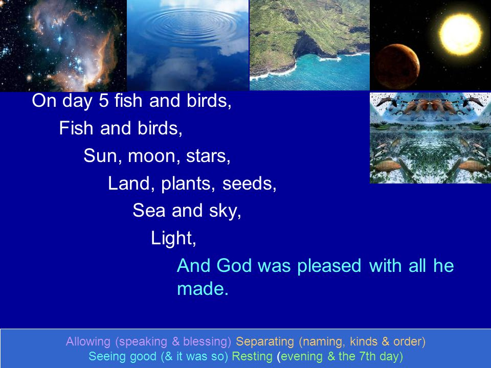 On day 5 fish and birds, Fish and birds, Sun, moon, stars, Land, plants, seeds, Sea and sky, Light, And God was pleased with all he made. Allowing (sp