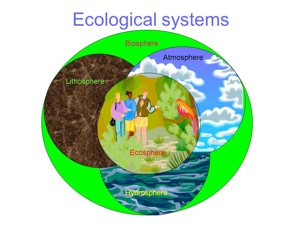 Ecological systems Biosphere Atmosphere Lithosphere Hydrosphere Ecosphere