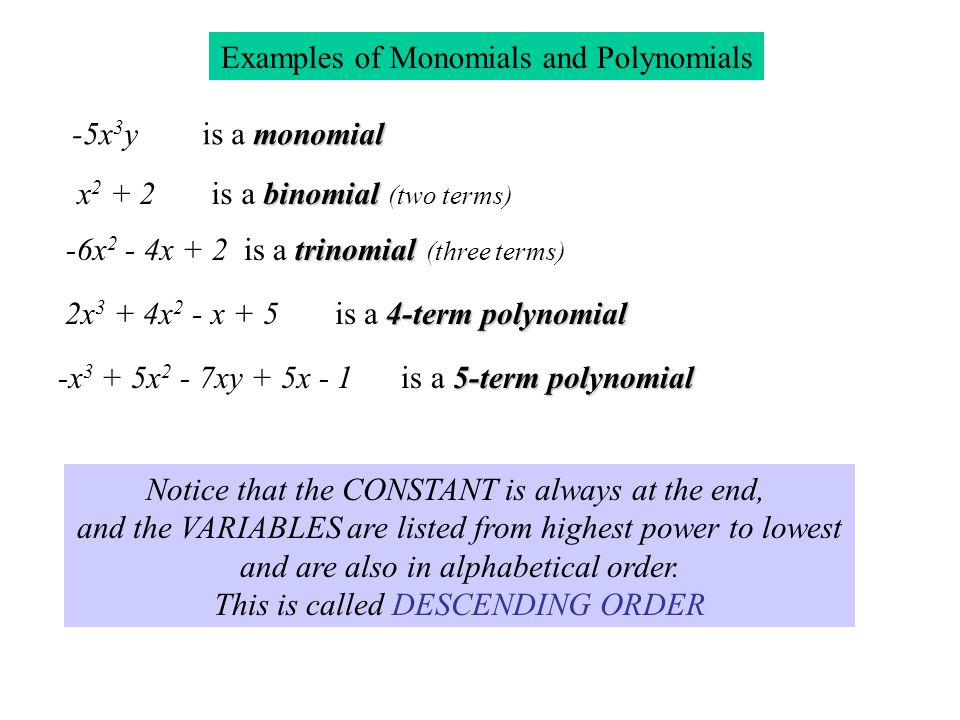 A Monomial is a single term (mono means one) Examples of monomials: 2, -5, 3x, 5x 2 y, xyz A monomial can be made up of numbers, variables, or both. A