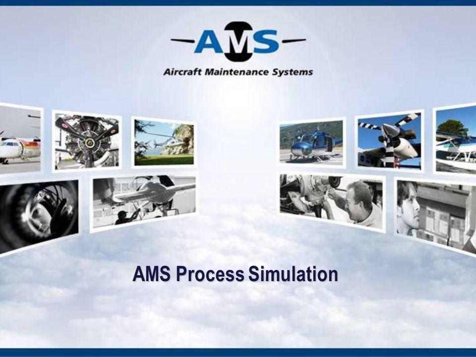 AMS Process Simulation