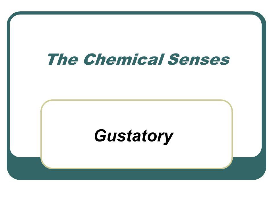 The Chemical Senses Gustatory