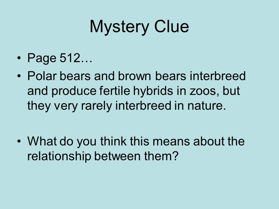 Mystery Clue Page 512… Polar bears and brown bears interbreed and produce fertile hybrids in zoos, but they very rarely interbreed in nature.