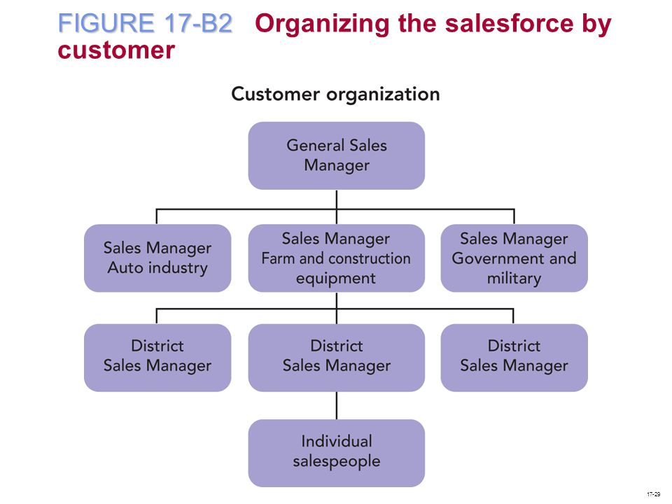 FIGURE 17-B2 FIGURE 17-B2 Organizing the salesforce by customer 17-29