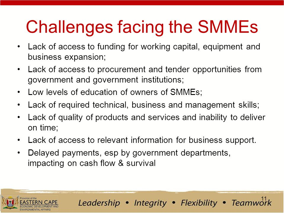 Challenges facing the SMMEs Lack of access to funding for working capital, equipment and business expansion; Lack of access to procurement and tender opportunities from government and government institutions; Low levels of education of owners of SMMEs; Lack of required technical, business and management skills; Lack of quality of products and services and inability to deliver on time; Lack of access to relevant information for business support.