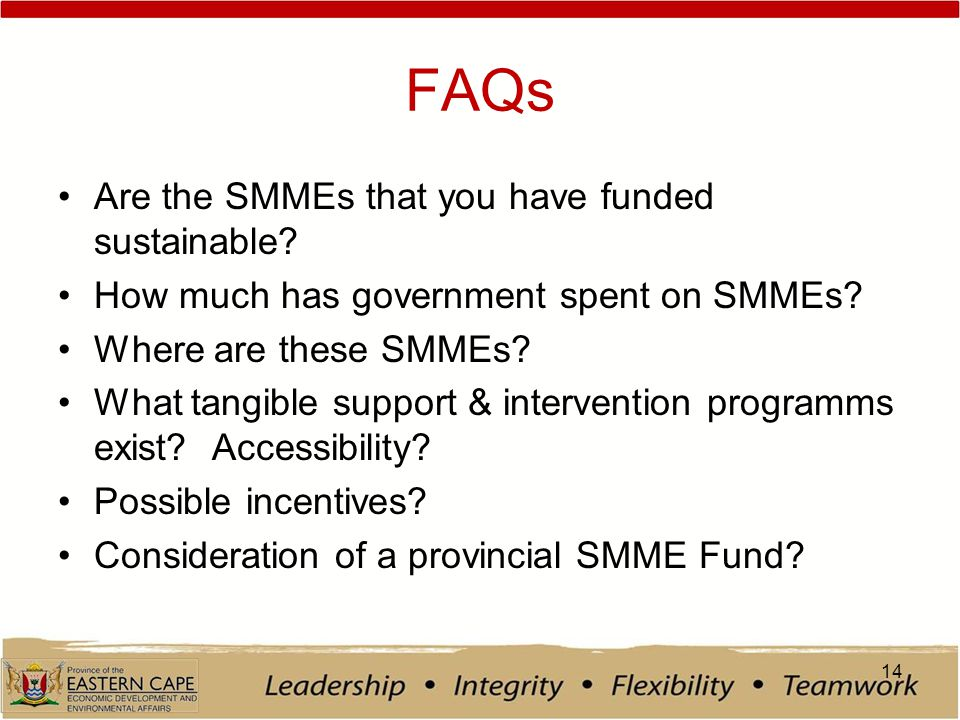 FAQs Are the SMMEs that you have funded sustainable.