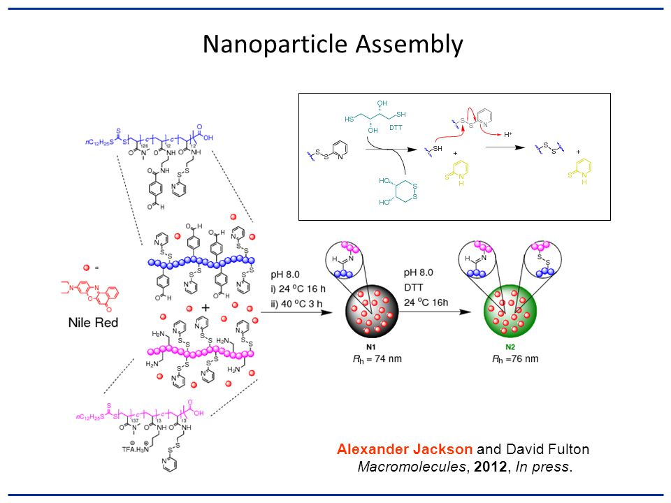 Nanoparticle Assembly Alexander Jackson and David Fulton Macromolecules, 2012, In press.