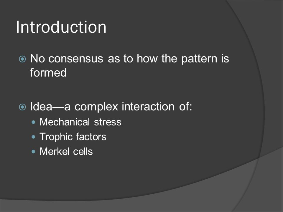 Introduction No consensus as to how the pattern is formed Ideaa complex interaction of: Mechanical stress Trophic factors Merkel cells