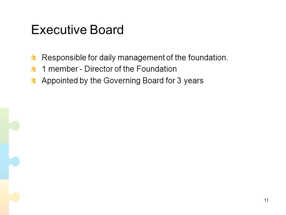 11 Executive Board Responsible for daily management of the foundation.