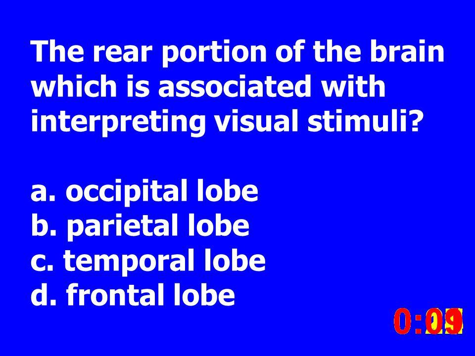 The rear portion of the brain which is associated with interpreting visual stimuli? a. occipital lobe b. parietal lobe c. temporal lobe d. frontal lob