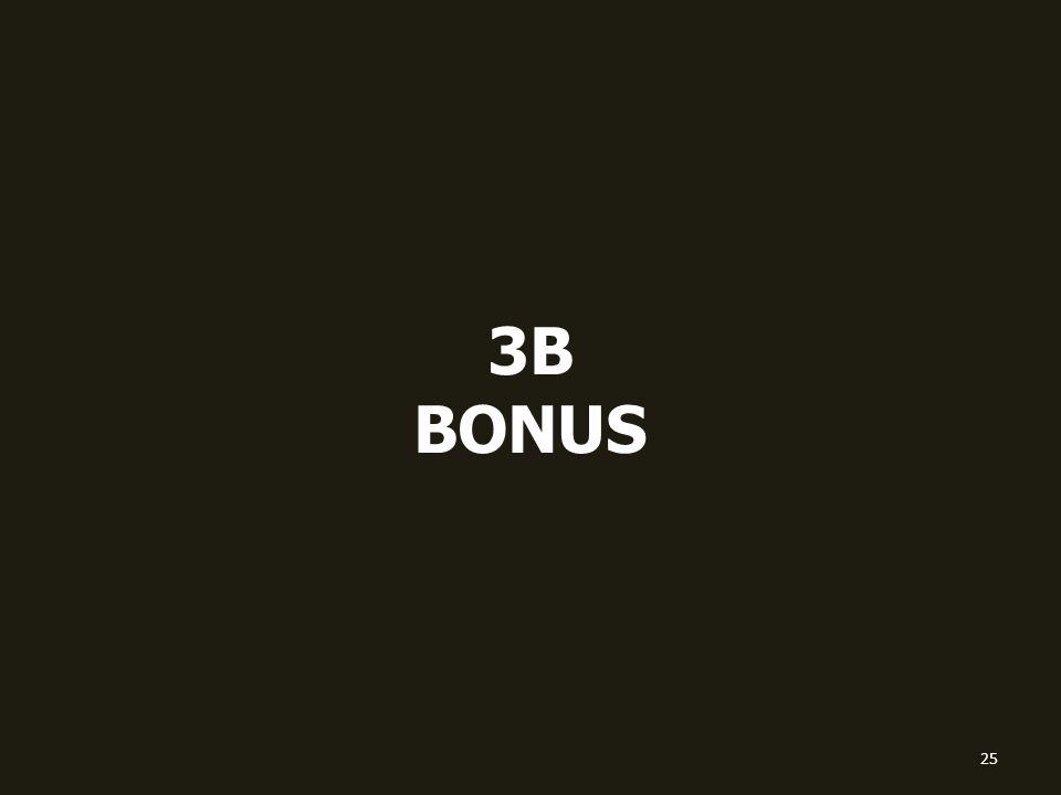 3B BONUS 25
