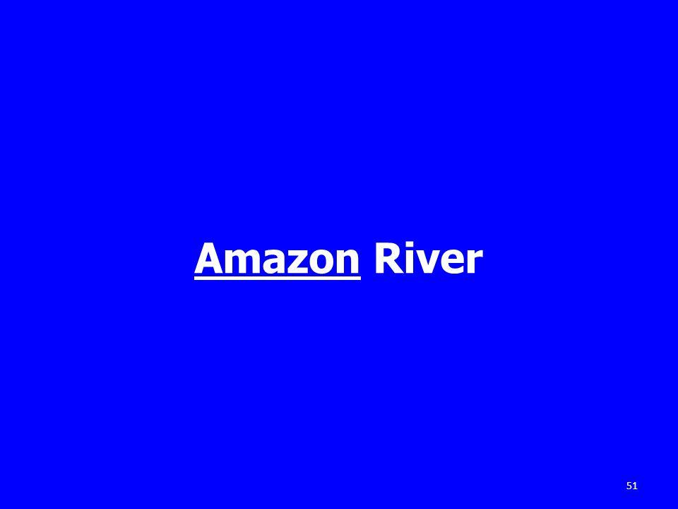 Amazon River 51