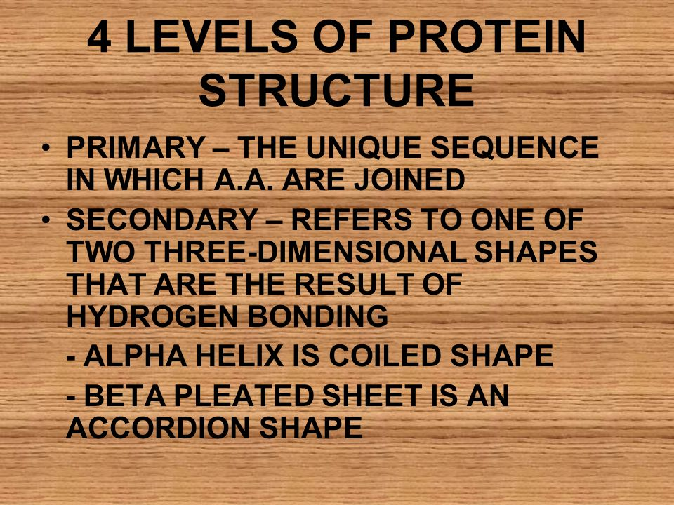 4 LEVELS OF PROTEIN STRUCTURE PRIMARY – THE UNIQUE SEQUENCE IN WHICH A.A. ARE JOINED SECONDARY – REFERS TO ONE OF TWO THREE-DIMENSIONAL SHAPES THAT AR