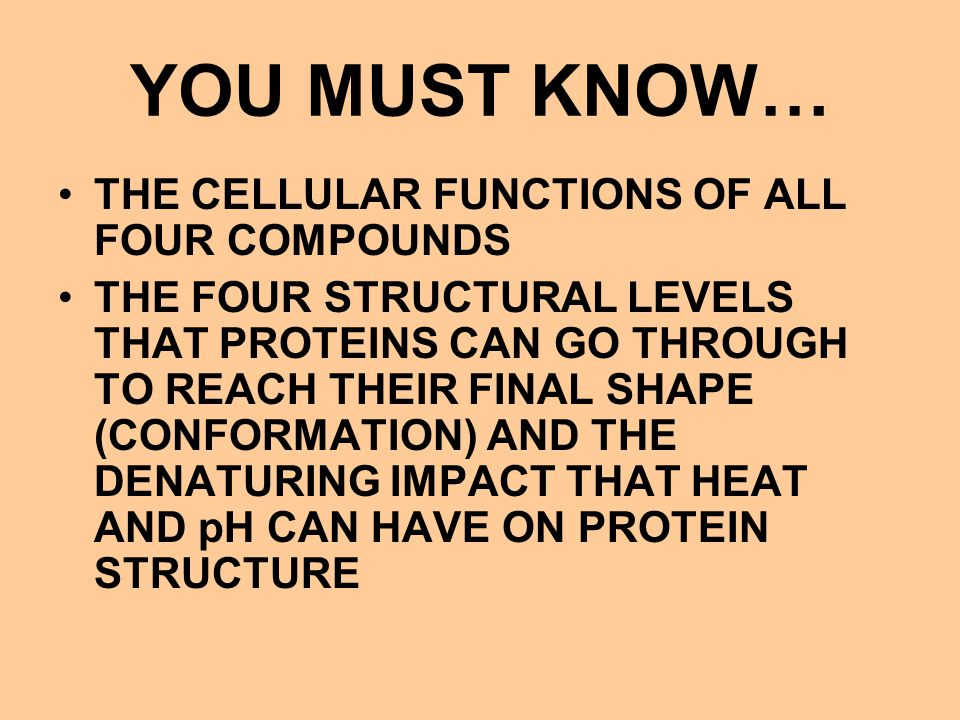 YOU MUST KNOW… THE CELLULAR FUNCTIONS OF ALL FOUR COMPOUNDS THE FOUR STRUCTURAL LEVELS THAT PROTEINS CAN GO THROUGH TO REACH THEIR FINAL SHAPE (CONFOR