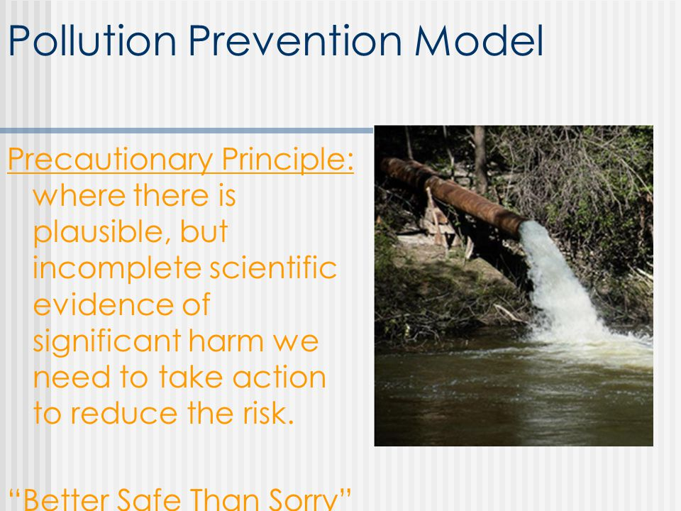 Pollution Prevention Model Precautionary Principle: where there is plausible, but incomplete scientific evidence of significant harm we need to take action to reduce the risk.