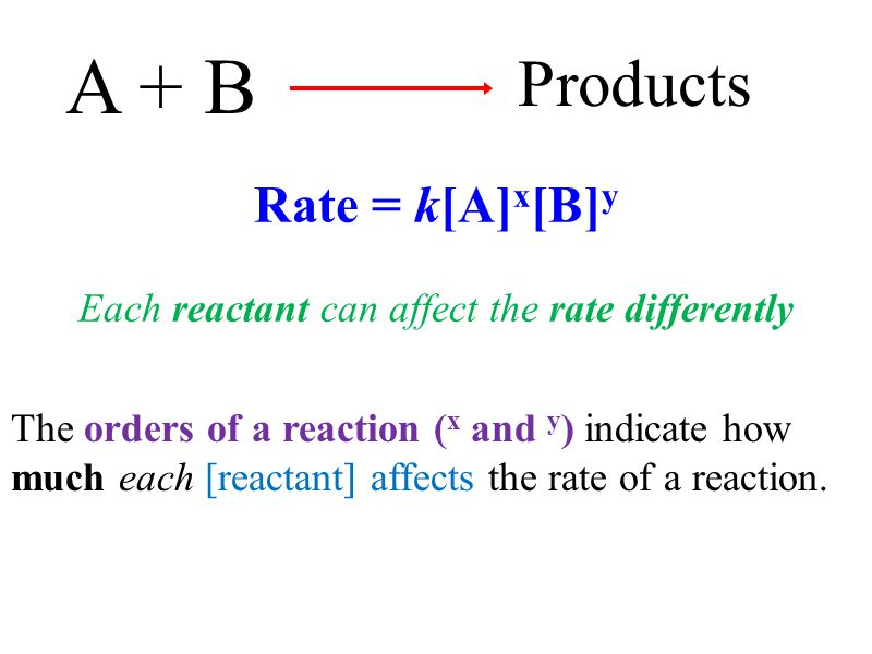 The orders of a reaction ( x and y ) indicate how much each [reactant] affects the rate of a reaction. A + B Products Rate = k[A] x [B] y Each reactan