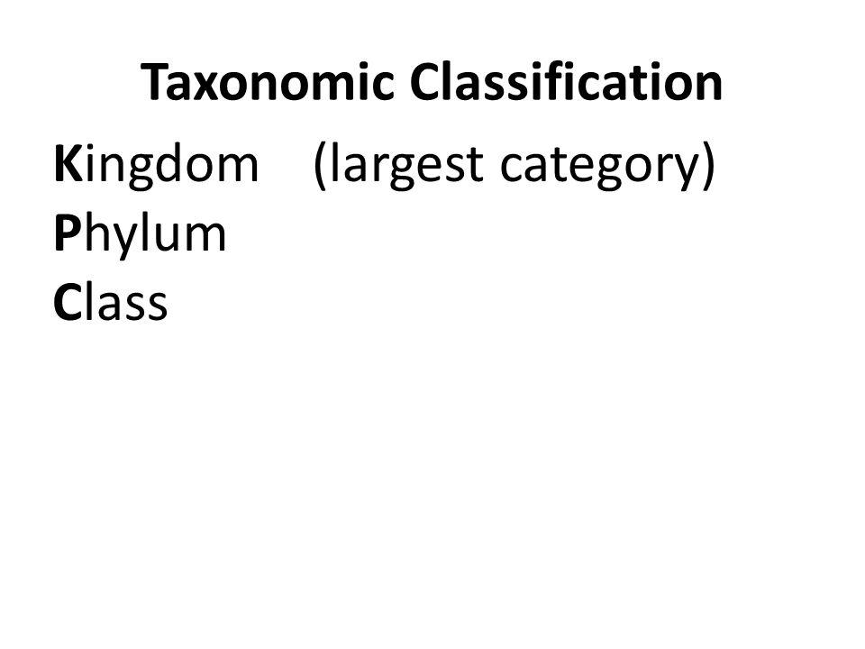 Taxonomic Classification Kingdom(largest category) Phylum Class