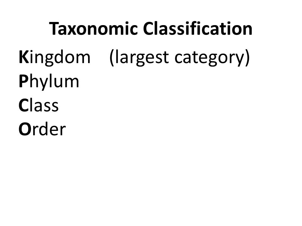 Taxonomic Classification Kingdom(largest category) Phylum Class Order